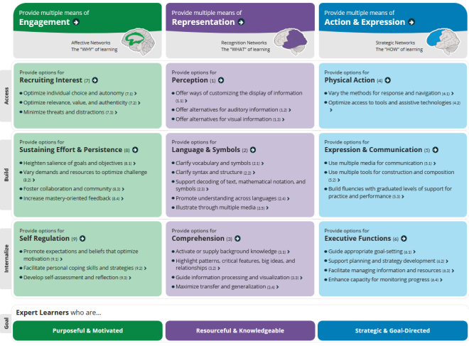 3x3 matrix of principles and guidelines with checkpoints.